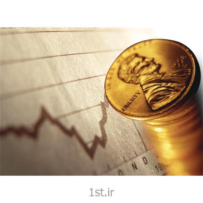 عکس خدمات حسابداریتهیه و تنظیم صورتهای مالی لاتین