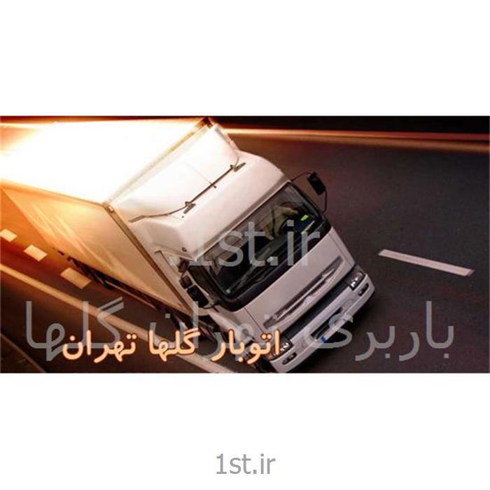 عکس حمل و نقل خاصخدمات باربری تهران گلها