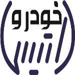 لوگو شرکت داتیس خودرو