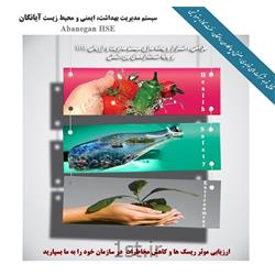 سیستم مدیریت بهداشت، ایمنی و محیط زیست (HSE)