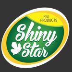 شرکت گروه تجاری ستاره درخشان استهبان