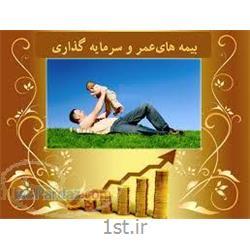 بیمه پس انداز و آتیه کودکان پارسیان