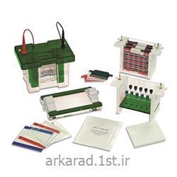 سیستم الکتروفورز مولتی کمپانی Consort bvba بلژیک مدل EVS1X00-Multi