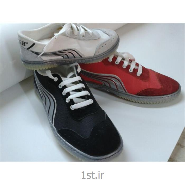 عکس کفش های ورزشیکفش ورزشی سالنی تایگر