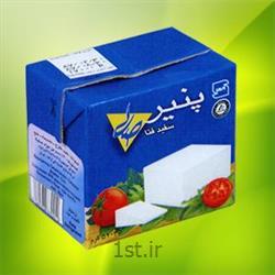 عکس پنیرپنیر سفید فتا پاکتی تتراپک 500 گرمی صلا