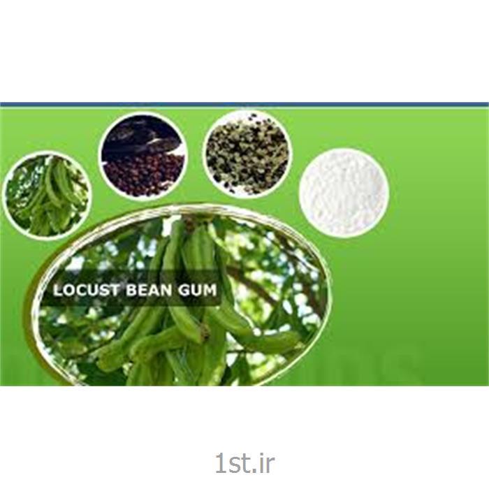 صمغ لوبیای خرنوب یا Locust Bean Gum) LBG) از شرکت LBG ایتالیا