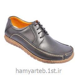 عکس سایر کفش هاکفش طبی مردانه تمام چرم کد 5119 تن یار :: Tanyar