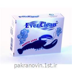 صابون گلیسیرینه شفاف خرچنگ اورکلین (Everclean chitin soap)