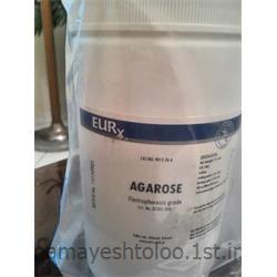 عکس سایر مواد شیمیاییآگارز EURx  لهستان - E0301  AGAROSE