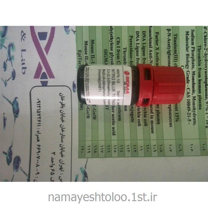 عکس سایر مواد شیمیاییان بی تی N6639 سیگما