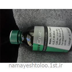 عکس سایر مواد شیمیاییآب دی ای پی سیCAS 7732-18-5 سانتاکروز DEPC water