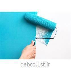 رنگ روغنی نانو آنتی باکتریال دبکو