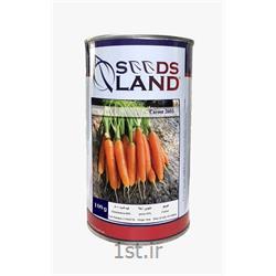 بذر هویج سیدزلند