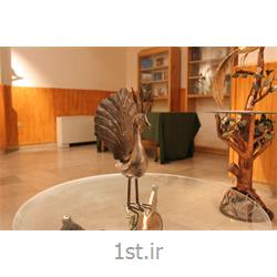 عکس صنایع دستی فلزیمجسمه فلزی تزئینی و رومیزی مدل طاووس