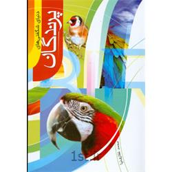 کتاب شگفتی های دنیای پرندگان -نشر جمال