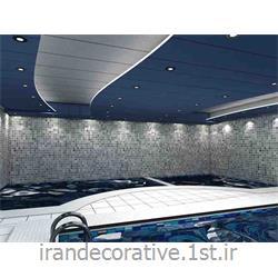 طراحی،دکوراسیون داخلی ورزشی (ایران دکوراتیو) با طراحی دیوارپوش،سقفپوش پانل پی وی سی آذران پلاستیک با پانل سفید و آبی