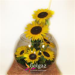 عکس شاخه گل تازهتنگ شیشه ای،آفتاب گردان،مدل 2797