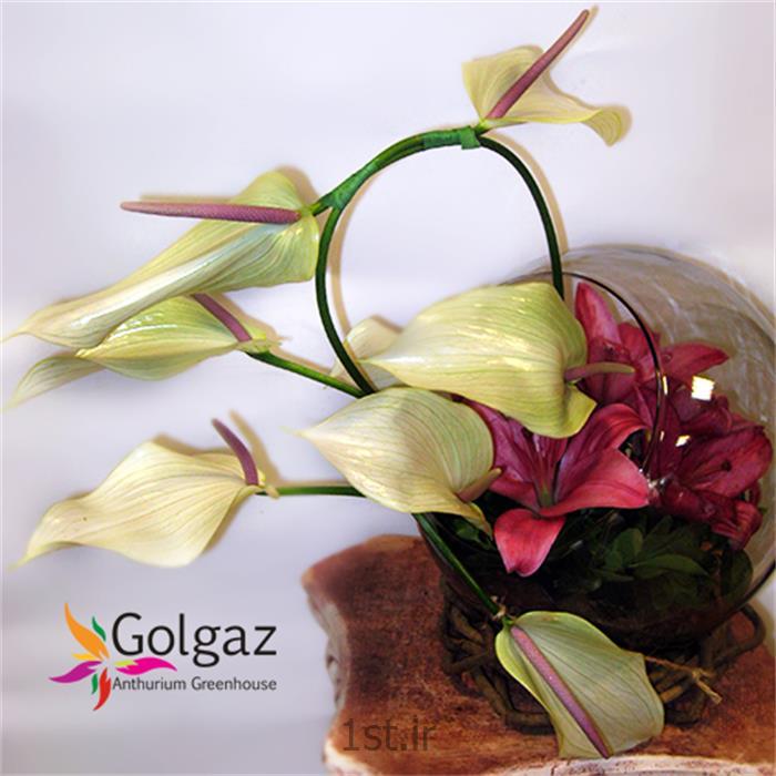عکس شاخه گل تازهتنگ شیشه ای،آنتوریوم،لیلیوم قرمز،مدل 2795