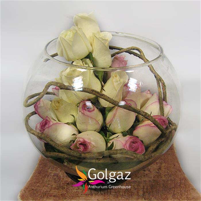 عکس شاخه گل تازهتنگ شیشه ای،رز،مدل 2798