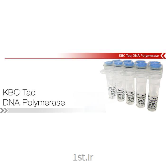 آنزیم تکثیر دهنده تک KBC Taq DNA Polymerase