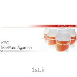 عکس سایر مواد شیمیاییآگاروز KBC Maxpure Agarose