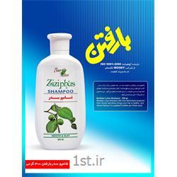 شامپو سدر 300 گرمی بارفتن ( Ziziphus Shampoo Barfatan )