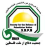 لوگو شرکت سازمان مردم نهاد جمعیت دفاع از ملت فلسطین