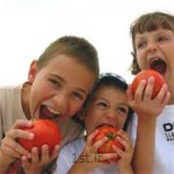 تغذیه کودک پیش دبستانی
