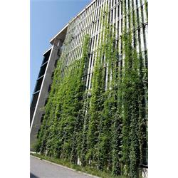 عکس سایر محصولات مرتبط با محیط زیستپوشش کابلی سبز(Green Cable)