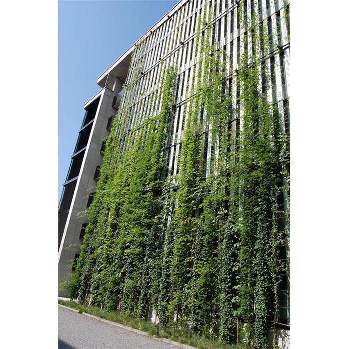 پوشش کابلی سبز(Green Cable)