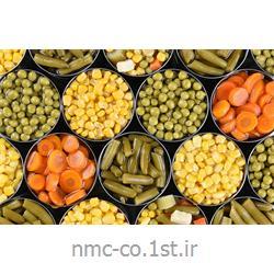 پمپ انتقال مواد غذایی  با تکه های  نسبتاً درشت به پرکن مدل  KPT 4010