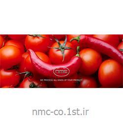 ماشین آلات تولید و بسته بندی رب گوجه و رب انار