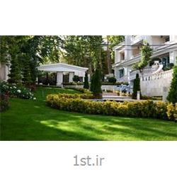 کاشت و نگهداری فضای سبز آپارتمان ها و برج ها