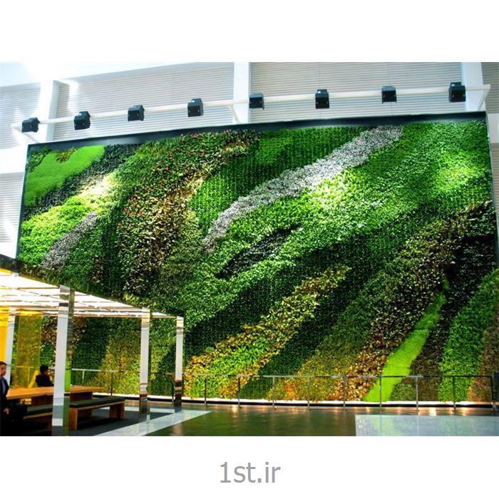 مشاوره و طراحی و اجرا و نگهداری دیوار سبز یا گرین وال