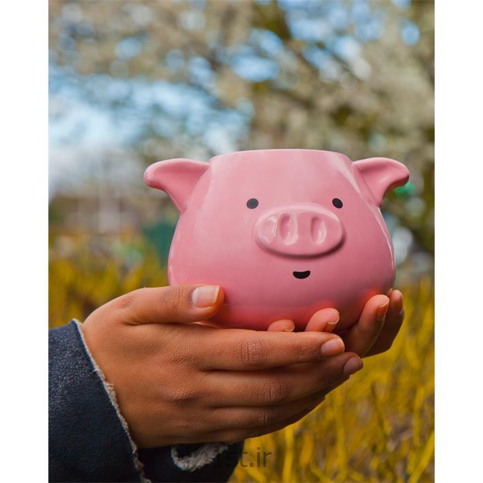 ماگ تامز آپ مدل Pig