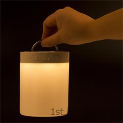 لامپ و اسپیکر هوشمند بلوتوثی OEM مدل D053