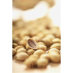 عکس سایر محصولات کشاورزیتخم گشنیز (خواص دارویی تخم گشنیز )