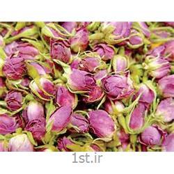 عکس سایر محصولات کشاورزیگل ختمی رنگی (خواص گیاهان دارویی و گل ختمی )