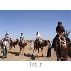 سافاری پارک ملی کویر