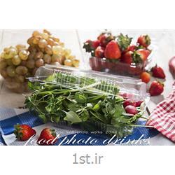 عکس سایر محصولات پلاستیکیلانچ باکس بلند