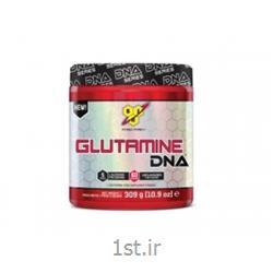 گلوتامین DNA بی اس ان BSN