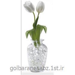 خاک ژله ای سفید