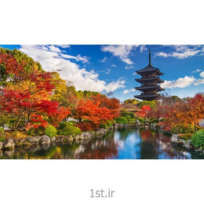 تور 9 روزه ژاپن  (4 شب توکیو_ هاگوئه + 4 شب اوزاکا_ کیوتو)