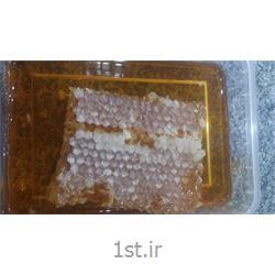 عسل  یک کیلوگرمی ژینو