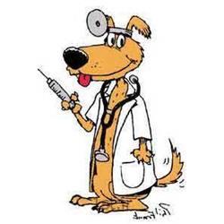 عکس ابزار و تجهیزات دامپزشکیواکسن هاری سگ های نگهبان و آپارتمانی
