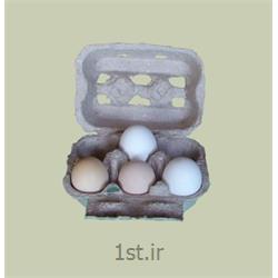 شانه تخم مرغ درب دار کاغذی یا مقوایی سفید white paper egg tray
