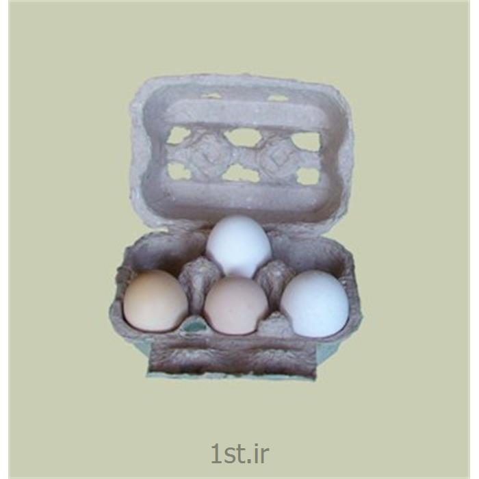 عکس سینی بسته بندیشانه تخم مرغ درب دار کاغذی یا مقوایی سفید white paper egg tray