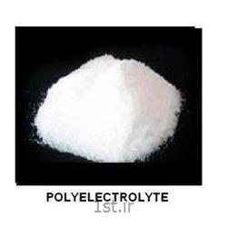 پلی الکترولیت آنیونیک - Anionic Polyelectrolyte