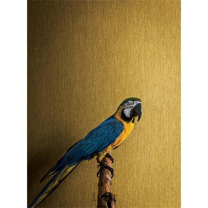 عکس کاغذ دیواری و دیوار پوشکاغذ دیواری کلاسیک بافت دار لوکس اروپایی جریکو Jerico